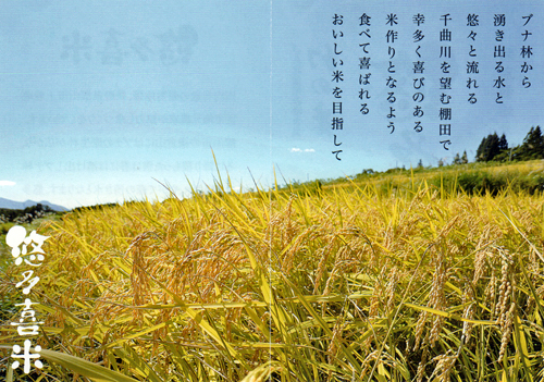 「食感データ」コシヒカリ(新潟岩船、長野飯山、佐賀上場)の比較 26年産