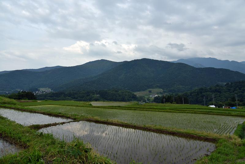 長野米 飯山「悠多喜米」生産向上対策会議