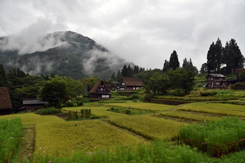 世界遺産「五箇山」花キラリ 富山県へ