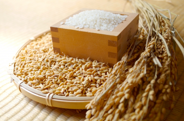 お米の品種は何種類ぐらいあるの?(平成30年産)
