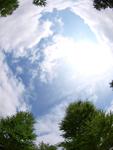 夏のお届け(指定日)最短日