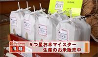 JCN関東 デイリーニュース(長粒米)