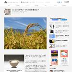 朝日新聞デジタルに連載「お米のことはプロに聞け!」