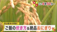 北海道文化放送「みんテレ」オンライン出演