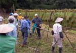 有機JAS認定 魚沼産コシヒカリ(はざかけ)