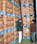 有機米・特別栽培米を求め「山形」へ