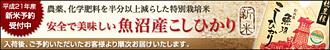 新米予約受付中!じっくり乾燥の特別栽培「魚沼産コシヒカリ」(10/17発送予定)