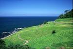 石川県輪島市観光課ホームページへ